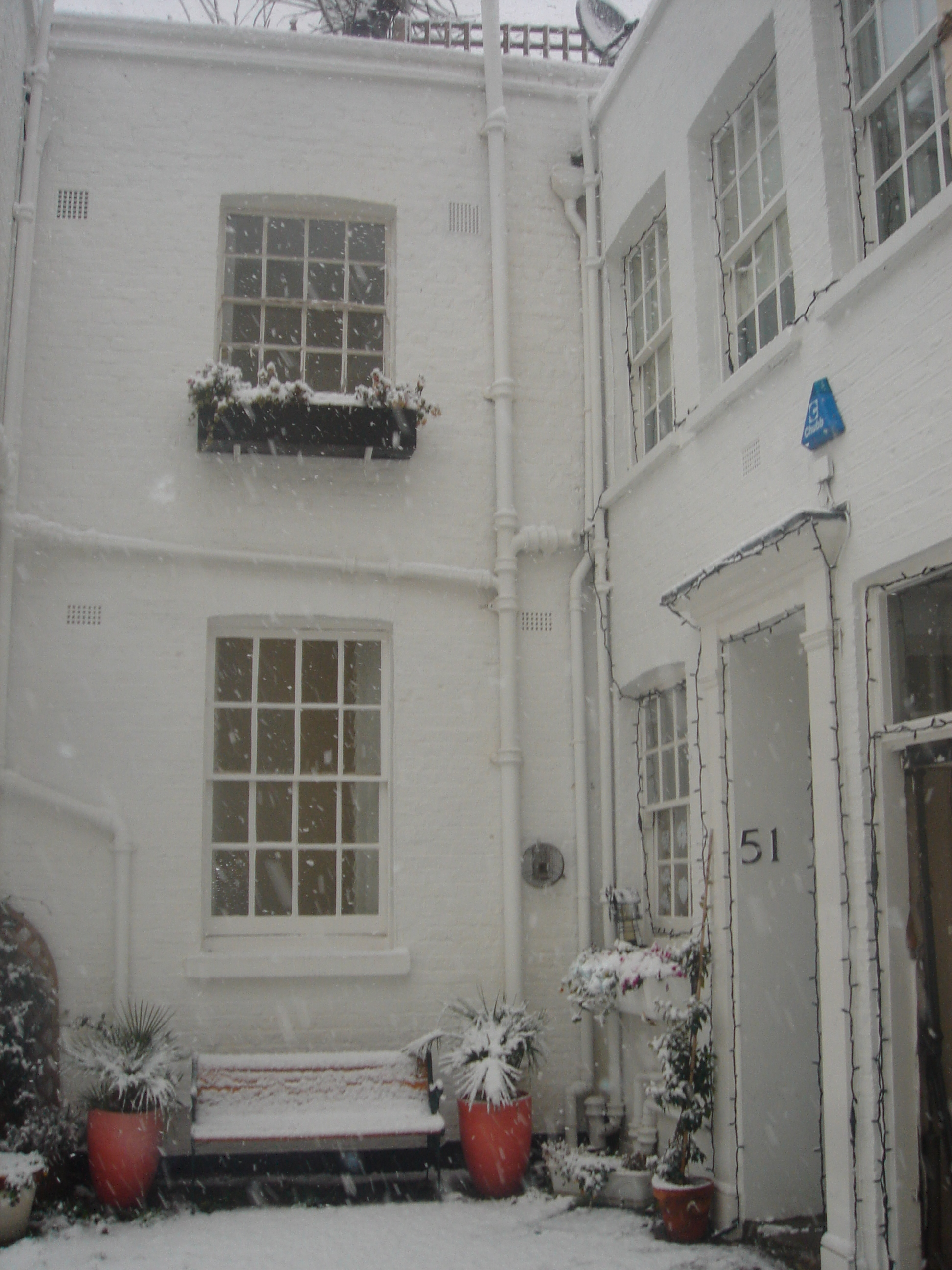 Little Mews Home Winter